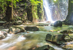 Mountain waterfall. In deep tropical forest Stock Images