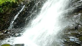 Mountain waterfall forest. Mountain waterfall stream in the forest stock footage