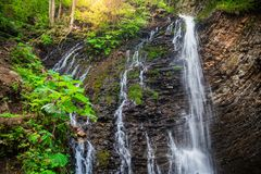 Mountain waterfall Guk in the wood. Ukrainian Carpathians. Mountainwaterfall Guk in the wood landscape. Ukrainian Carpathians Royalty Free Stock Photo