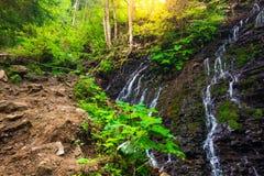 Mountain waterfall Guk in the wood. Ukrainian Carpathians. Mountainwaterfall Guk in the wood landscape. Ukrainian Carpathians Royalty Free Stock Image