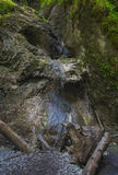Mountain waterfall in Slovak Paradise Royalty Free Stock Image