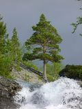 Mountain waterfall in summer in nothern mountains. Mountain waterfall in rocky nothern mountains in Russia in summer at midday stock images