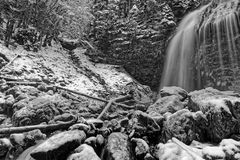 Waterfall in Chartreuse Black and white royalty free stock photo