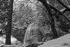 Waterfall through the trees in Chartreuse Black and white royalty free stock image