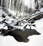 Mountain waterfall at winter. Carpathian mountains, Ukraine. The Mountain waterfall at winter. Carpathian mountains, Ukraine Stock Image