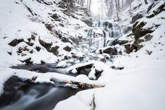 Mountain waterfall at winter. Carpathian mountains, Ukraine. The Mountain waterfall at winter. Carpathian mountains, Ukraine Royalty Free Stock Photography
