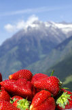 Mountain Wellness. A pile of strawberries in front of an alpine backdrop; mountain out of DOF Royalty Free Stock Photos