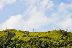 Mountain, West in Thailand. Mountain at Kanchanaburi in Thailand Royalty Free Stock Photo