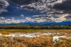 Mountain Wetlands Royalty Free Stock Image