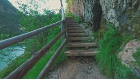 Mountain wild forest trail near Braies lake, Dolomites, Italy stock video footage