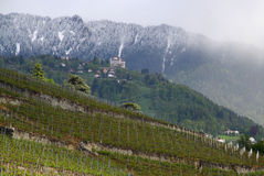 Mountain and wineyard in the back of Montreux Stock Photo