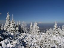 Mountain winter. Poland. Karkonosze. Mountain path somewhere near Pielgrzymy Royalty Free Stock Image