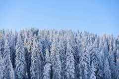Mountain at winter Royalty Free Stock Images