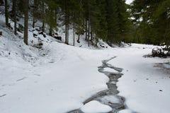 Mountain winter landscape Royalty Free Stock Photo