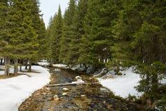 Mountain winter landscape Stock Photo