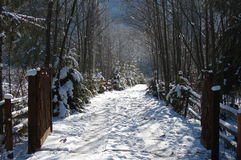 Mountain winter road. A mountain road covered in snow Stock Photo