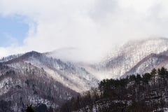 Mountain in winter season Stock Image