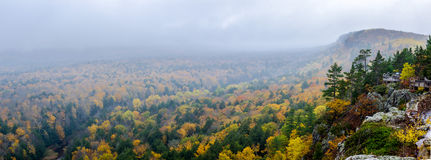 Mountain, woods, river, and mist Royalty Free Stock Photos