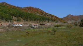 The mountain YouRenGu. YouRenGu here, the house or the new soon Stock Photography
