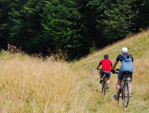 Mountainbike Foto de Stock Royalty Free