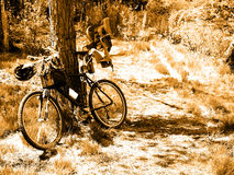 Mountainbike Stockbild