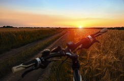 Mountainbike auf dem Gebiet bei Sonnenuntergang Lizenzfreies Stockbild