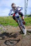 Mountainbike in discesa Immagini Stock