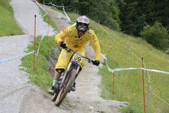 Mountainbike Downhill Stock Images
