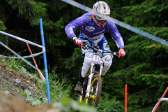 Mountainbike Downhill Stock Photos