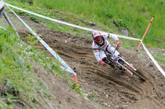 Mountainbike Downhill Royalty Free Stock Images