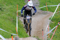 Mountainbike Downhill Royalty Free Stock Photo