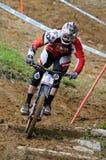 Mountainbike Downhill Royalty Free Stock Photo