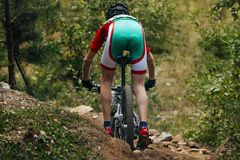 Mountainbike downhill Royalty Free Stock Image