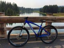 Mountainbike Pitstop Lizenzfreie Stockfotografie