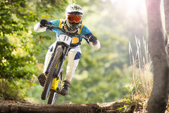 Mountainbike sluttande Forest Action Sport Royaltyfri Foto