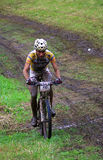 Mountainbikekonkurrent stockbilder