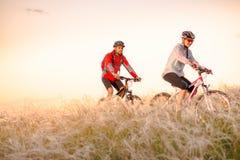 Mountainbiken för barnparridning i det härliga fältet av fjädergräs på solnedgången Affärsföretag och familjlopp royaltyfria foton