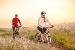 Mountainbiken för barnparridning i det härliga fältet av fjädergräs på solnedgången Affärsföretag och familjlopp arkivfoton