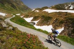 Mountainbiker骑马在阿尔卑斯 免版税图库摄影