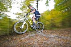 Mountainbiker скачет в древесины вены Стоковая Фотография RF