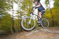 Mountainbiker скачет в древесины вены Стоковое Изображение