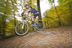 Mountainbiker скачет в древесины вены Стоковые Фотографии RF