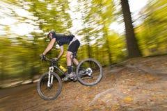 Mountainbiker скачет в древесины вены Стоковое фото RF