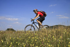 Mountainbiker Stock Foto's