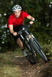 Mountainbiker Stock Photos
