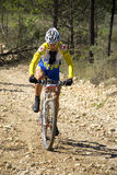 Mountainbiker Royalty Free Stock Image