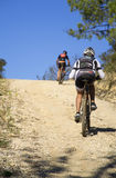 Mountainbiker stock images