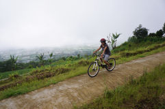 Mountainbiker Stockbild