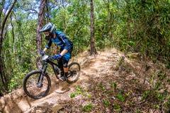 Mountainbiker 3 Lizenzfreie Stockbilder