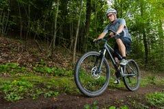 Mountainbiker driving on a singletrail Royalty Free Stock Photo